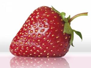 Photo-fraise5